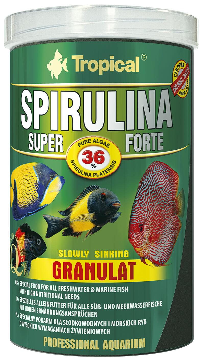 Super spirulina forte granulat 36 spirulina for Zierfische barsch