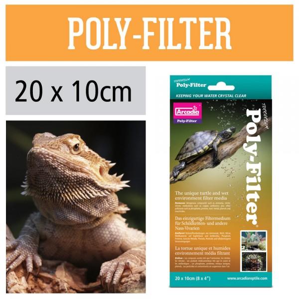 Poly-Filter Terrarium