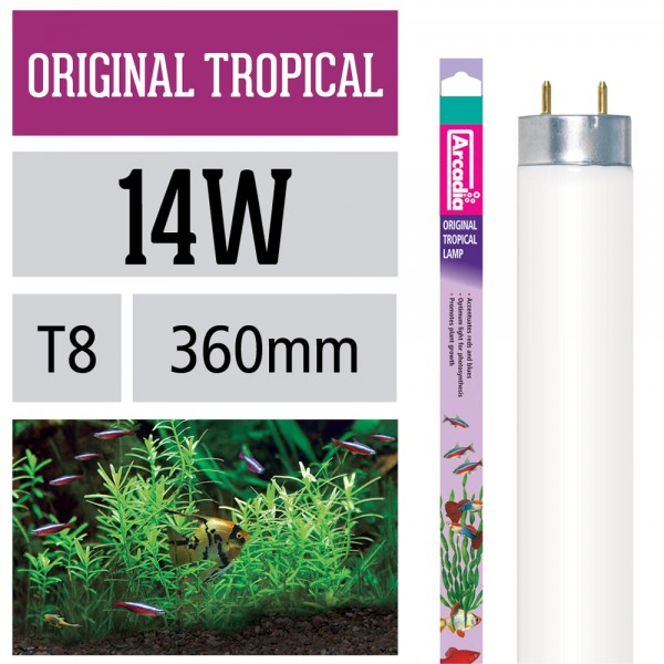 Original Tropical Leuchtstoffröhre