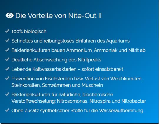Nite-Out-II1