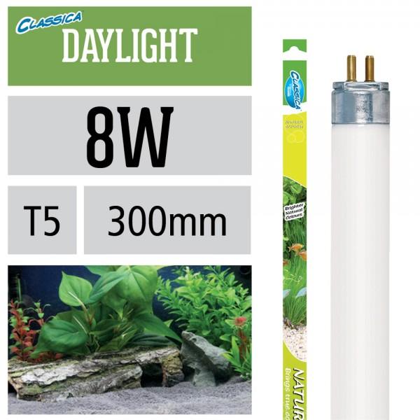 Natural Daylight Leuchtstoffröhre T5