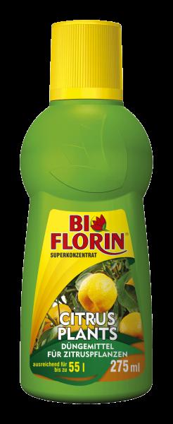 Bi Florin CITRUS PLANTS