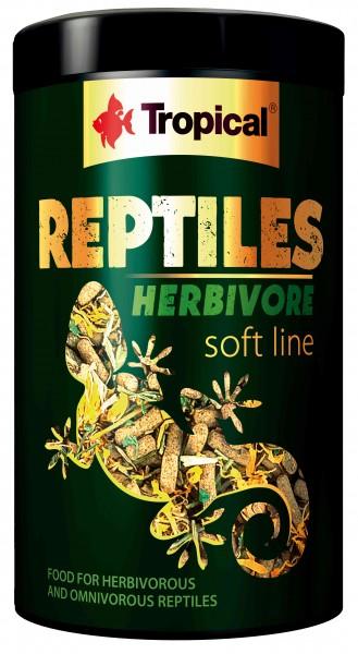 Reptiles Herbivore Soft Line
