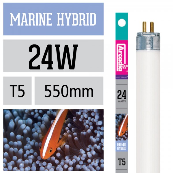 Marine Hybrid Leuchtstoffröhre 60% Marine White 40% Marine Blue