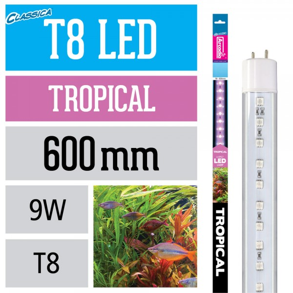 T8 Led Lampe - Tropical