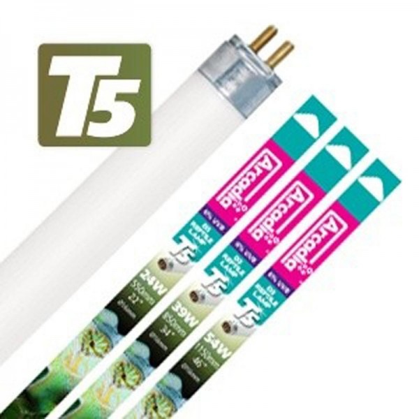 D3 Reptile Lamp T5 / UV-B 6%