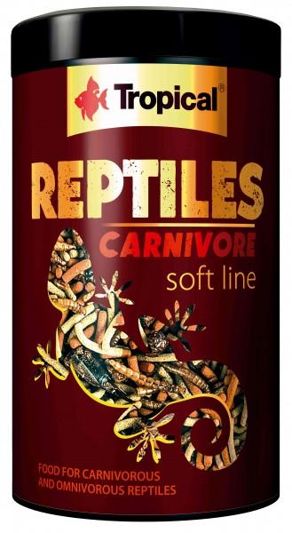 Reptiles Carnivore Soft Line