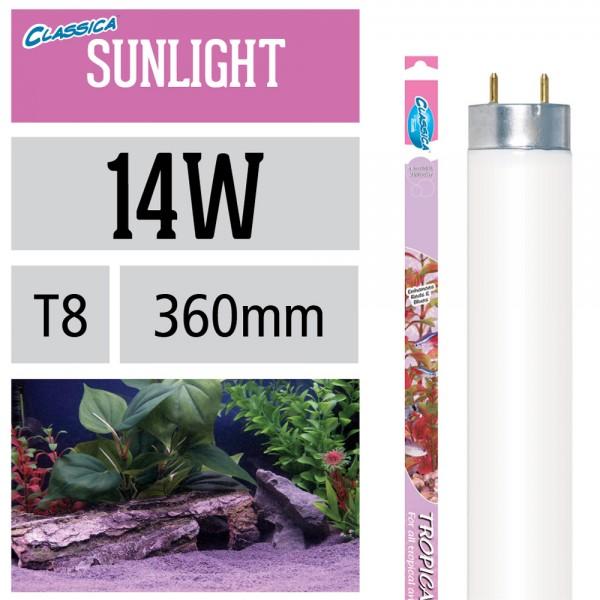 Natural Tropical Sunlight Leuchtstoffröhre - T8