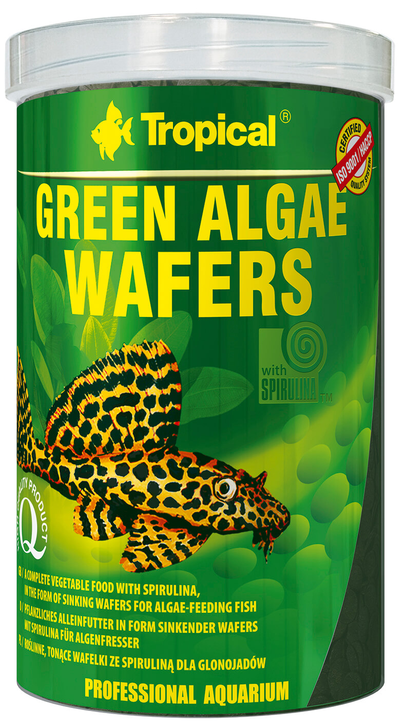 green algae wafers wels welschips chips chipsfutter welsfutter futter f r welse welsi. Black Bedroom Furniture Sets. Home Design Ideas