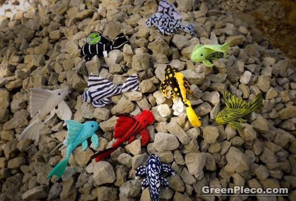 GreenPleco Set 10