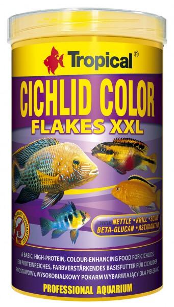 Cichlid Color