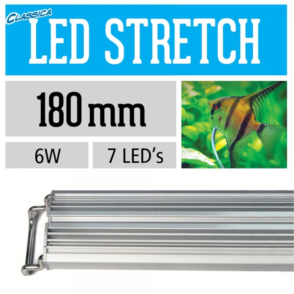 LED Stretch - Freshwater