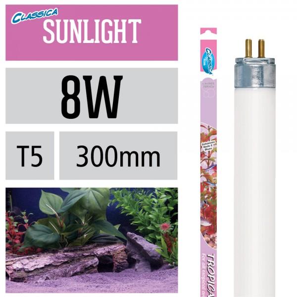 Natural Tropical Sunlight Leuchtstoffröhre - T5