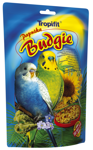 Budgie (Wellensittich)