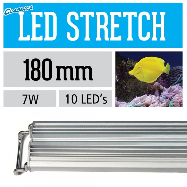 LED Stretch - Marine