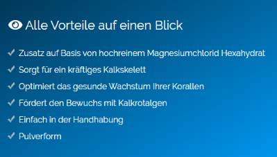 Screenshot-Basic2