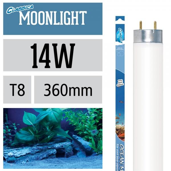 Ocean Moonlight Leuchtstoffröhre