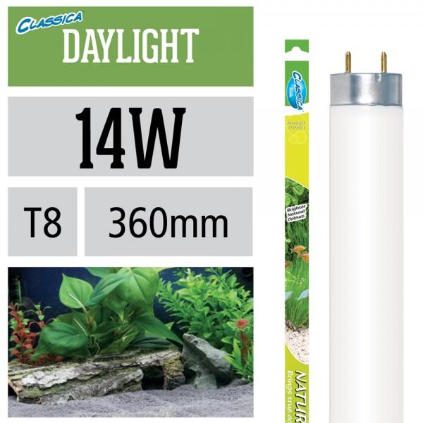 Natural Daylight Leuchtstoffröhre T8