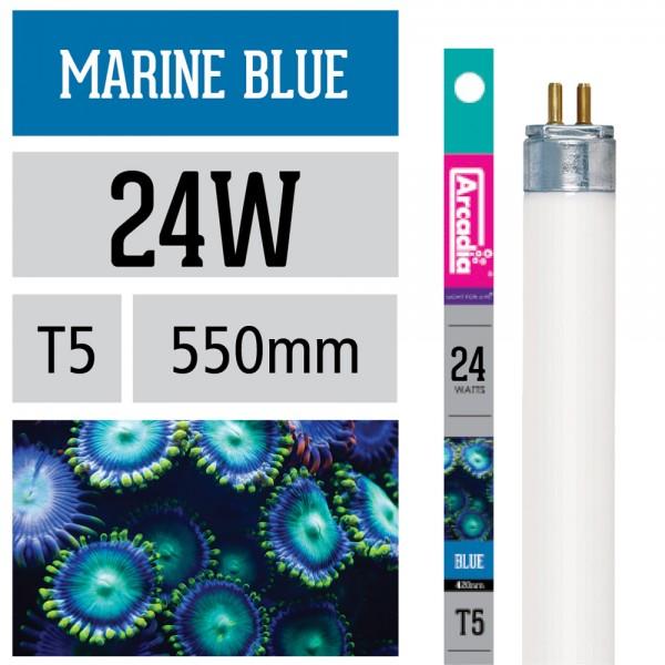 Marine Blue Leuchtstoffröhre 420 NM T5