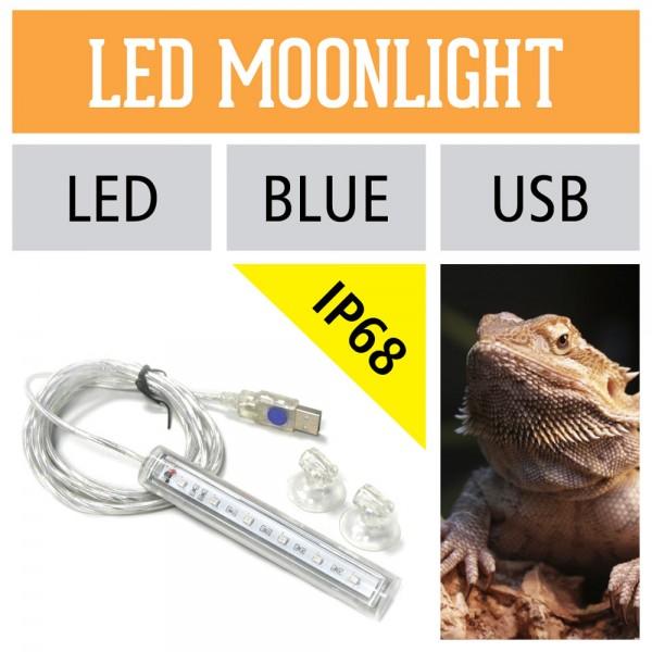 Reptilien Mondlicht LED-Streifen