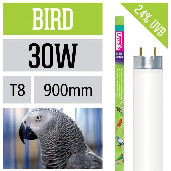 Vogel Leuchtstoffröhre T8
