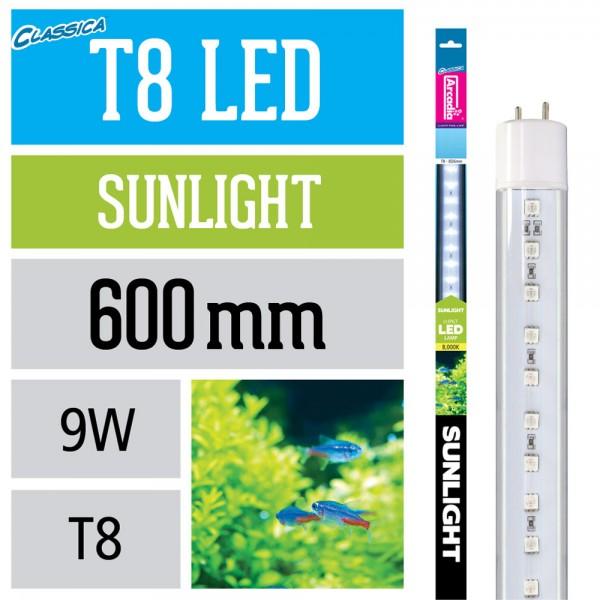 T8 Led Lampe - Sunlight