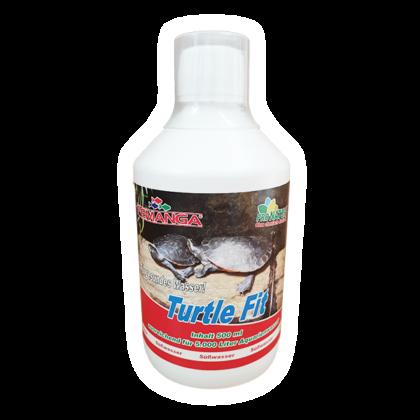 Femanga Turtle Fit