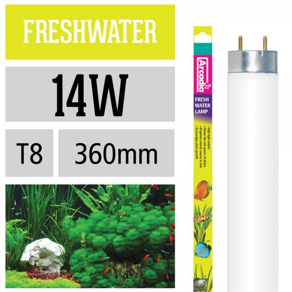 Freshwater Leuchtstoffröhre
